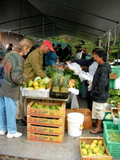 Sunday Farmer's Market in Volcano Village