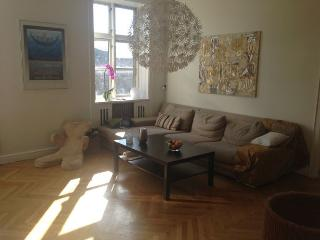 Lovely Copenhagen apartment at Frederiksberg district