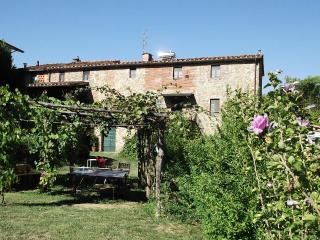 Typical Tuscan farmhouse between Florence and Lucca, Pescia