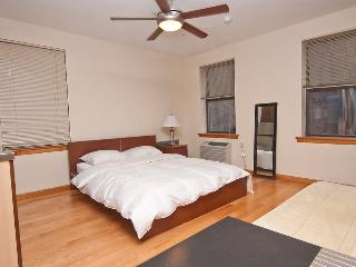 13854/ Newly Renovated Studio In Murray Hill, LaFayette