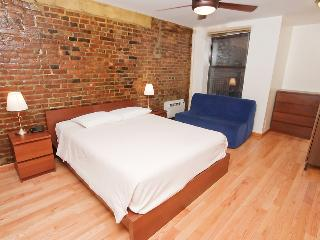 13852/ Newly Renovated Studio In Murray Hill, LaFayette