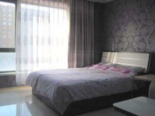 Modern Studio Apartment, Peking