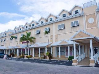 Luxury Condo centrally located  - Park Place (17)