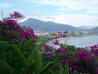 Tropical Paradise; 3 suites each separately rented, Zihuatanejo
