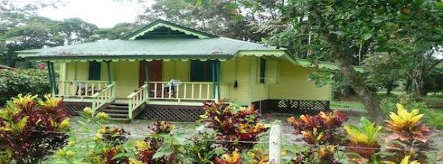 Amarilla House