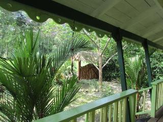 Amarilla House, the terrace