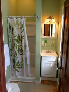 One of the 3 newly-renovated bathrooms
