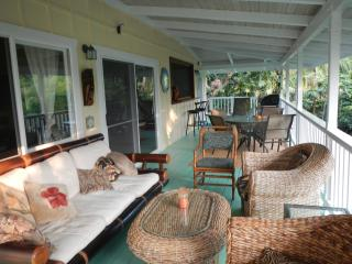 Manini Mermaid Beach House by Kealakekua Bay!