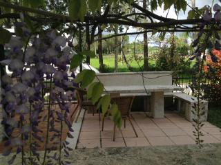 Wisteria Apartment with Fantastic Views in Manciano, Saturnia
