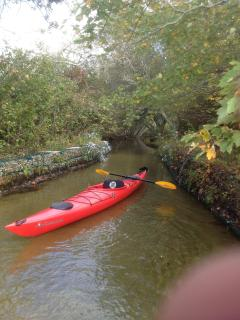 One of the 4 Kayaks provided - one identical to shown and 2 kids (up to 120 lb) kayaks