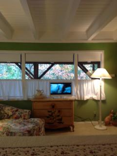 Panoramic view of forest from Master Bed