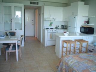 Beautifull studio apartment on the Beach - Miami B, Miami Beach