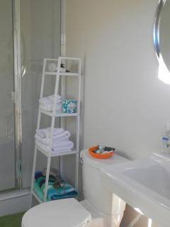 Newly remodeled bathroom with large shower.