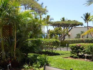 Maui Kamaole 1 Bedroom Garden View B110, Kihei
