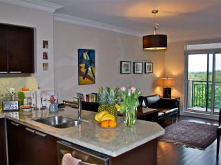 CENTRAL LUXURY CONDO WITH FREE PARKING, Toronto
