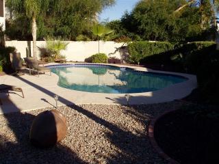 40 Foot Heated Pebbletec Diving Pool