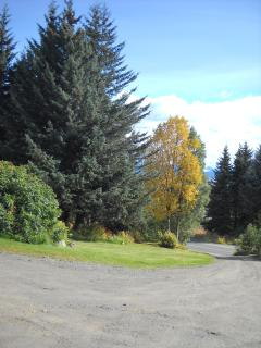 Driveway and grounds