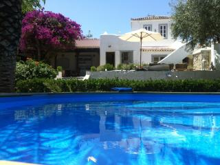 Spetses Villa in a wonderful Greek island garden