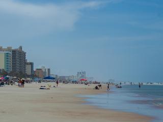 New! Beautiful Views of the Beach, South Facing Sleeps 6