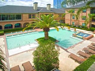 Furnished Apartment Upper Kirby Houston