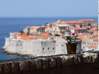 Amazing view of the Old Town in Dubrovnik