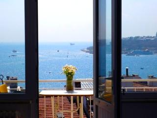 Bos & Old City Vus. 3bd, 2bath, 50% off winter, C3, Estambul