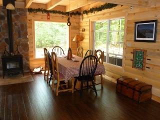 Dining area with wood stove