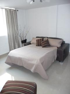 MASTER SUITE-SOFA BED