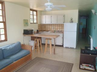 Kitchen/Living Room