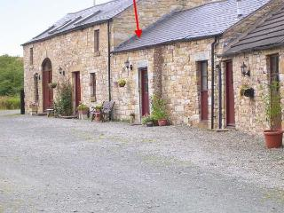SWALLOW COTTAGE, horse stabling available, fantastic rural location, pet-friendly, cosy terrace cottage near Newcastleton, Ref. 903680