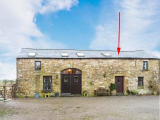 LAPWING COTTAGE, woodburner, arable farm setting, shared games room, pets welcome, terrace cottage near Newcastleton, Ref. 903701