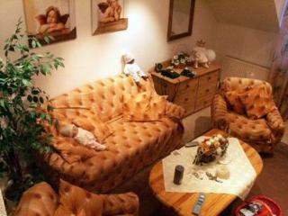 Vacation Apartment in Bad Neuenahr-Ahrweiler - 538 sqft, relaxing, tasteful, comfortable (# 4787)