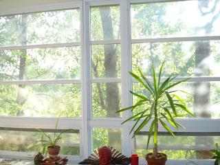 Big open window over looking trees and open green space