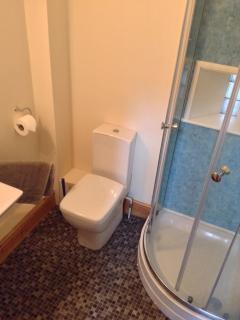 Shower in en-suite bedroom.