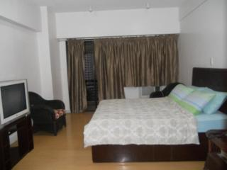 Apartment In The Area Of Greenbelt, Makati