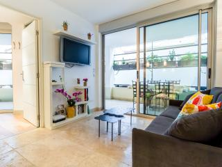 Ozanam - appartement calme avec grande terrasse