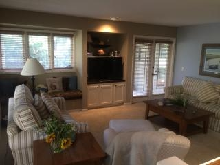 BEAUTIFUL HOME with PRIVATE LAGOON,AMAZING Views,4, Hilton Head