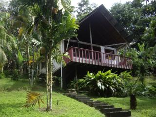 Pavones Jungle Cabin close to the Surf