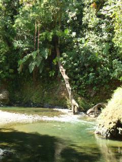 Refreshing Rio Claro pools
