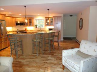 State of the art appliances and granite counters