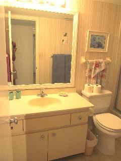 Master Vanity & Bath with Bath Tub & Shower