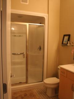 Master Ensuite bathroom features a walk-in shower