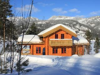 Suberb cabin in sunny Telemark