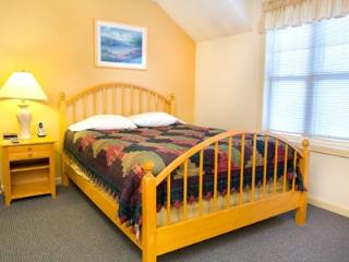 Mt View Resort 2br condo with view, amenities located at Eastern Slope Inn - indoor pool, hiking and cross-country trails, North Conway