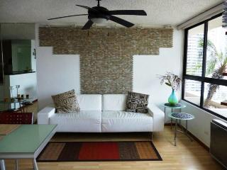 Charming Apartment in Paitilla, Panama