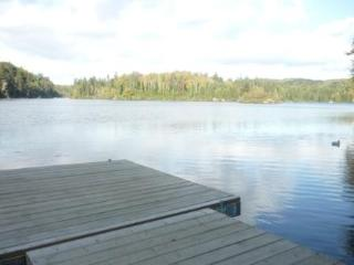 Dock View - summer
