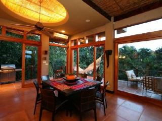 Luxury in the Jungle, Manuel Antonio National Park