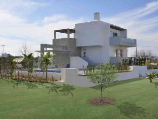 LUXURY XENOS VILLA1 WITH PRIVATE POOL AND GARDEN