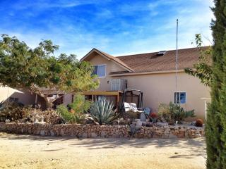 The Cactus Patch: Your home away from home, Joshua Tree