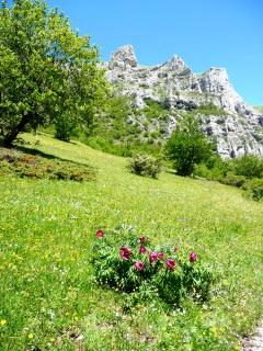 The Sibillini mountains in Spring